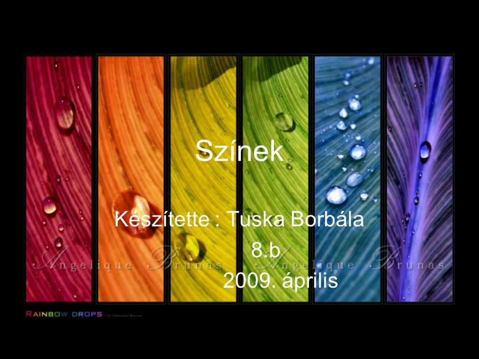 Készítette : Tuska Borbála 8.b 2009. április