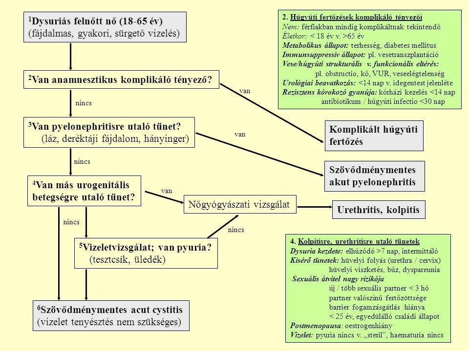 1Dysuriás felnőtt nő (18-65 év) (fájdalmas, gyakori, sürgető vizelés)