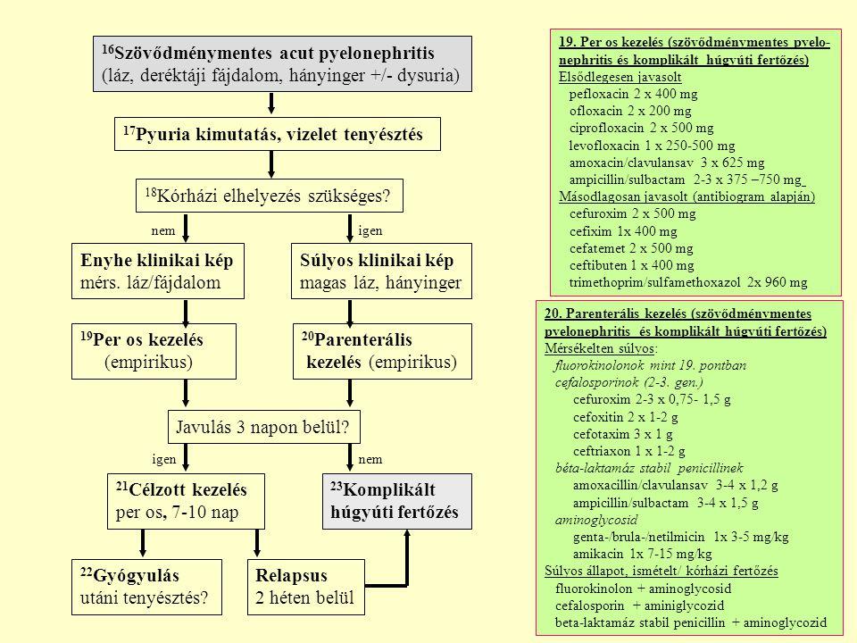 16Szövődménymentes acut pyelonephritis