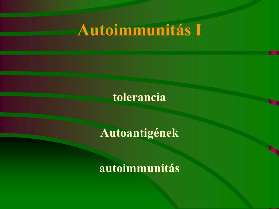 Autoimmunitás I tolerancia Autoantigének autoimmunitás