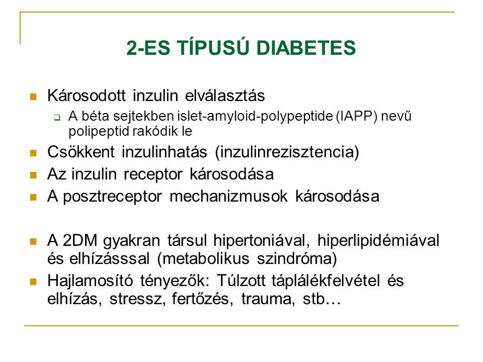 2-ES TÍPUSÚ DIABETES Károsodott inzulin elválasztás