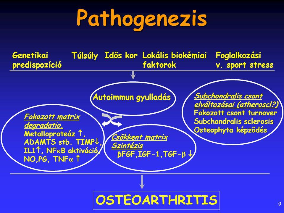 Pathogenezis OSTEOARTHRITIS Genetikai predispozíció Túlsúly Idős kor