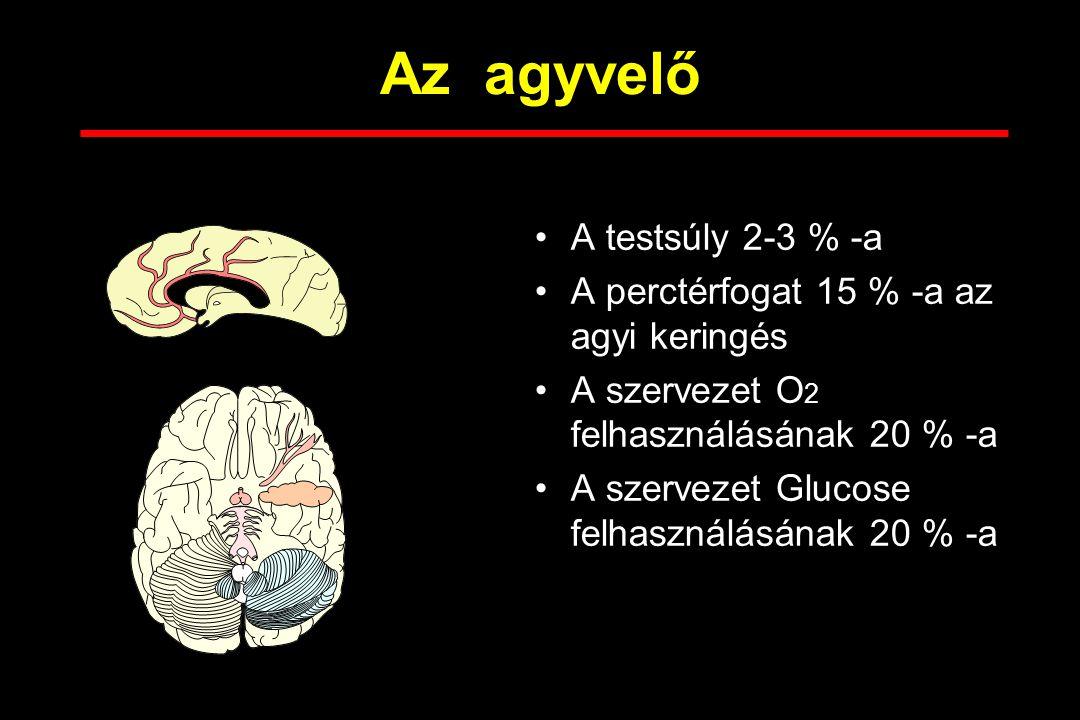 Az agyvelő A testsúly 2-3 % -a A perctérfogat 15 % -a az agyi keringés