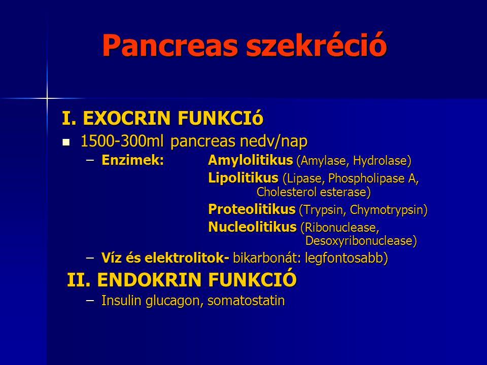 Pancreas szekréció I. EXOCRIN FUNKCIó 1500-300ml pancreas nedv/nap