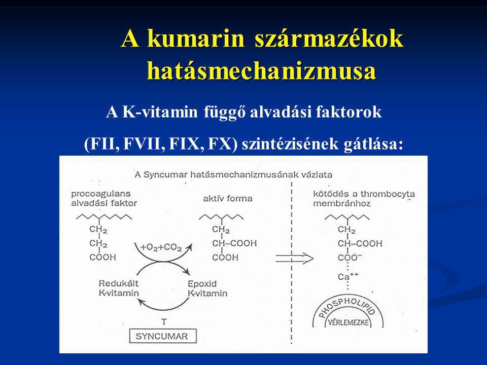 A kumarin származékok hatásmechanizmusa