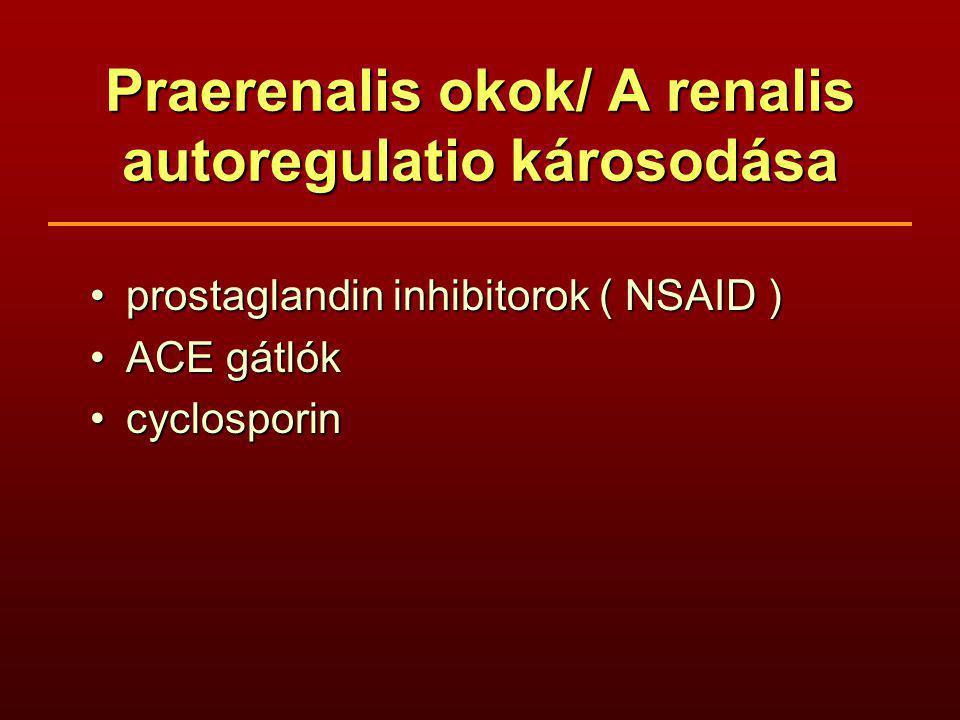 Praerenalis okok/ A renalis autoregulatio károsodása