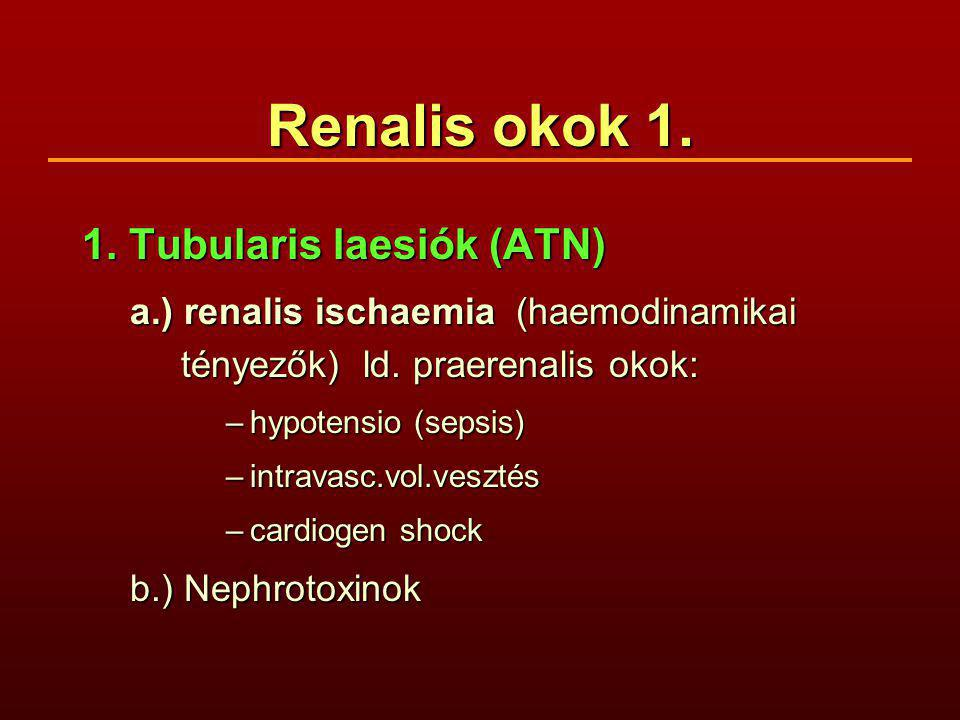 Renalis okok 1. 1. Tubularis laesiók (ATN)