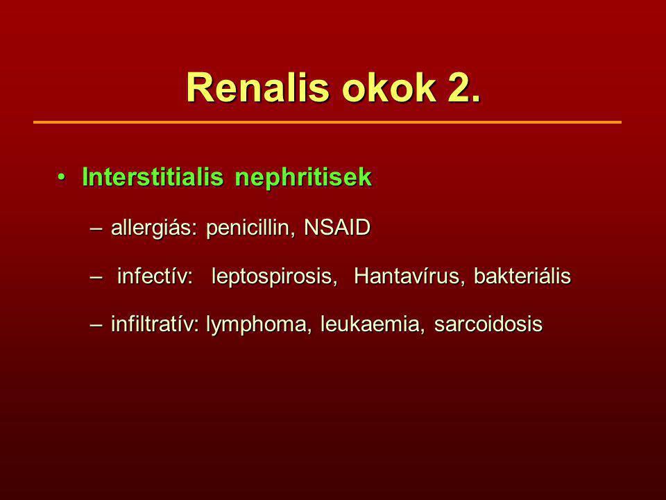 Renalis okok 2. Interstitialis nephritisek