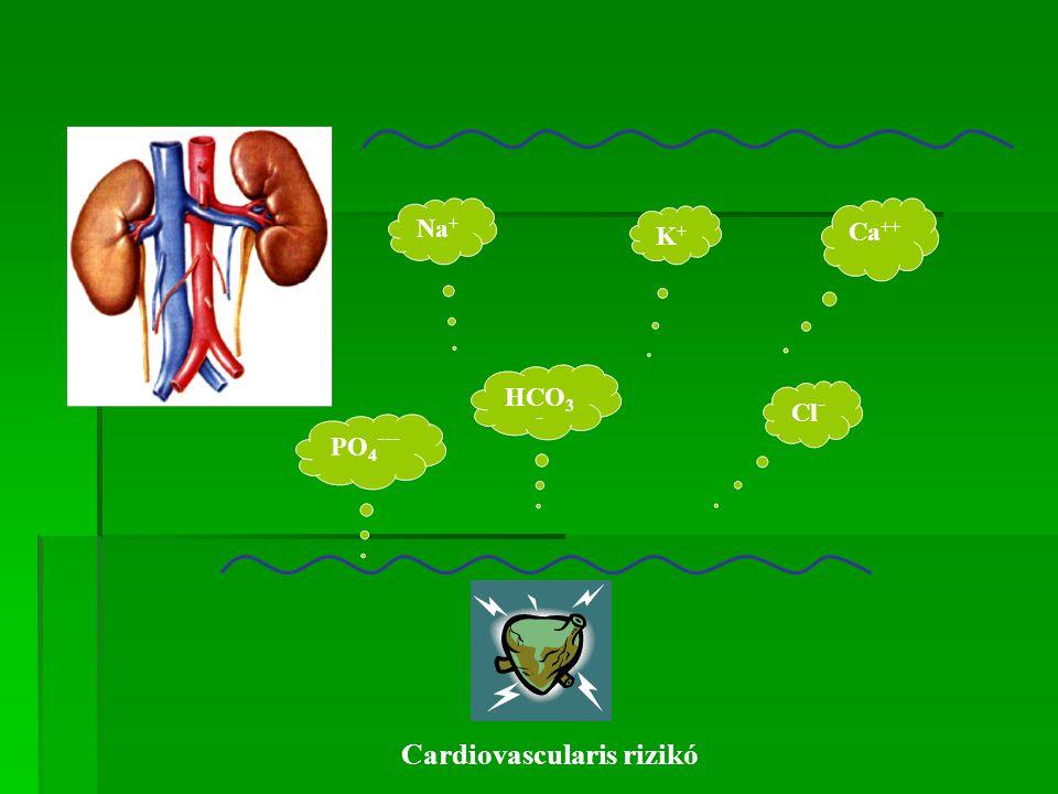 Cardiovascularis rizikó
