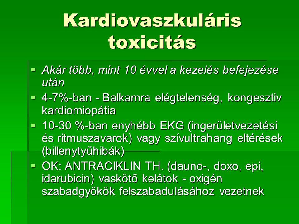 Kardiovaszkuláris toxicitás