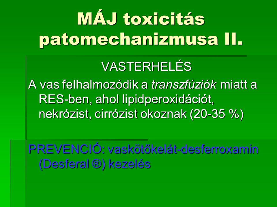 MÁJ toxicitás patomechanizmusa II.