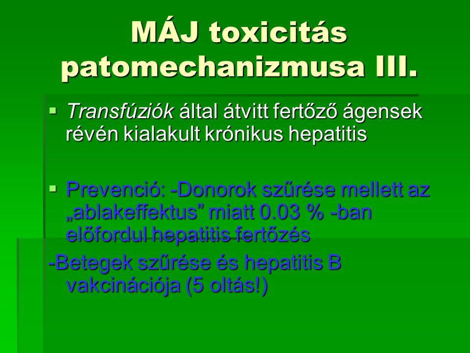 MÁJ toxicitás patomechanizmusa III.