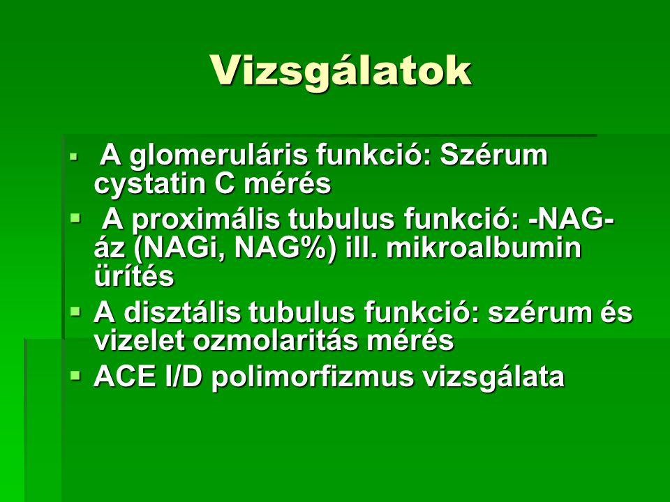 Vizsgálatok A glomeruláris funkció: Szérum cystatin C mérés. A proximális tubulus funkció: -NAG-áz (NAGi, NAG%) ill. mikroalbumin ürítés.