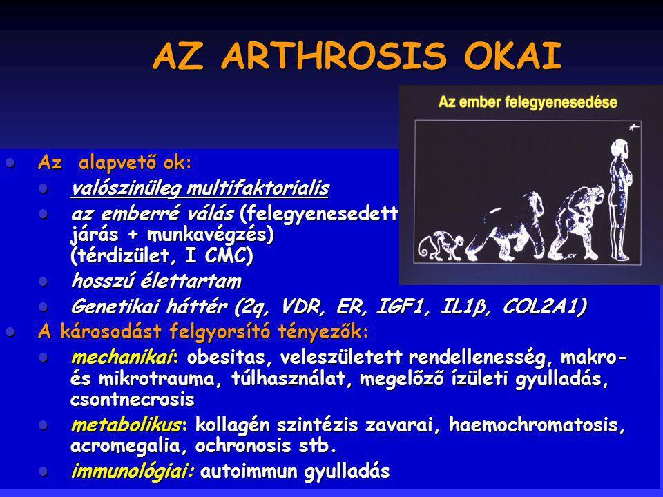 AZ ARTHROSIS OKAI Az alapvető ok: valószinüleg multifaktorialis