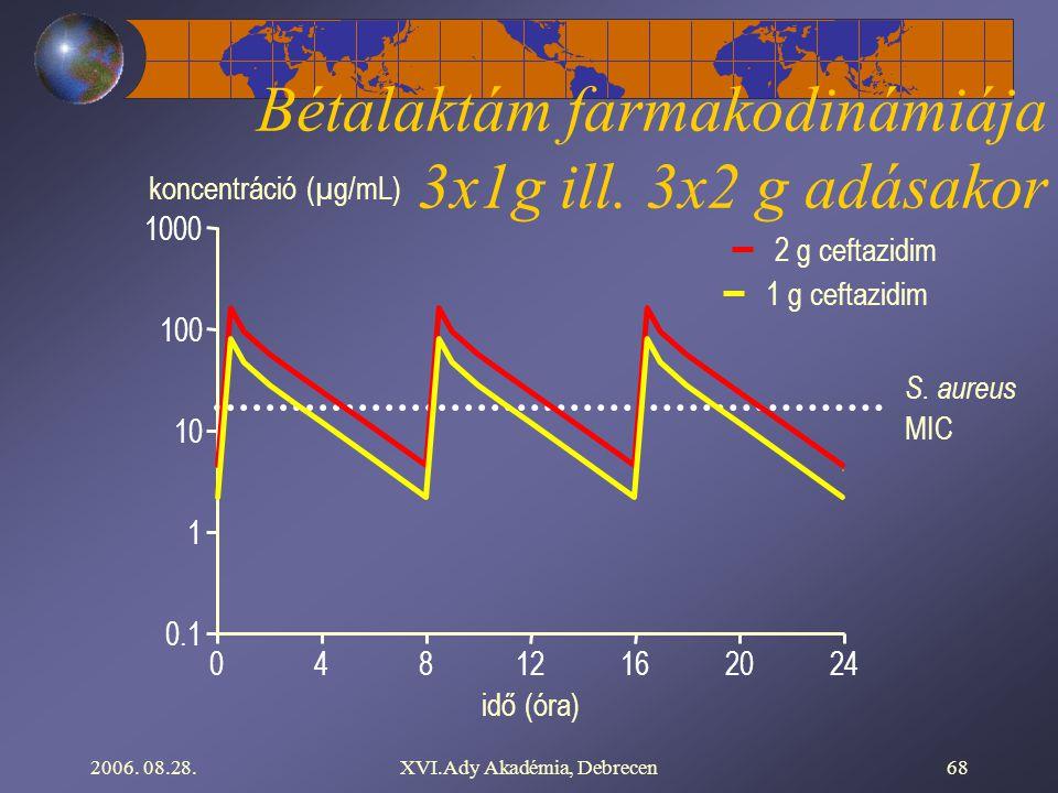 Bétalaktám farmakodinámiája 3x1g ill. 3x2 g adásakor