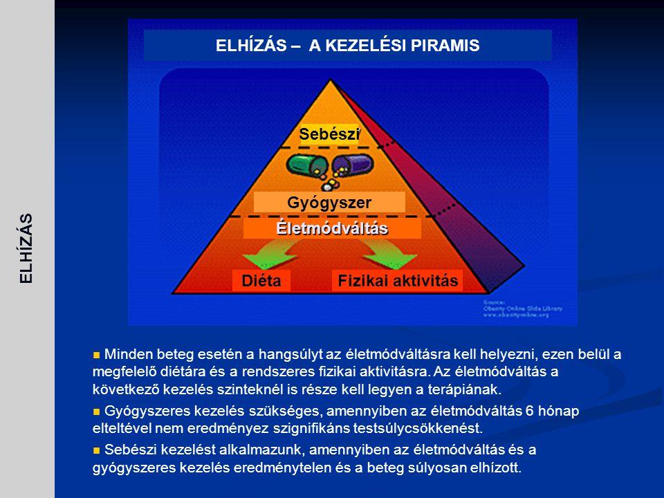 ELHÍZÁS – A KEZELÉSI PIRAMIS