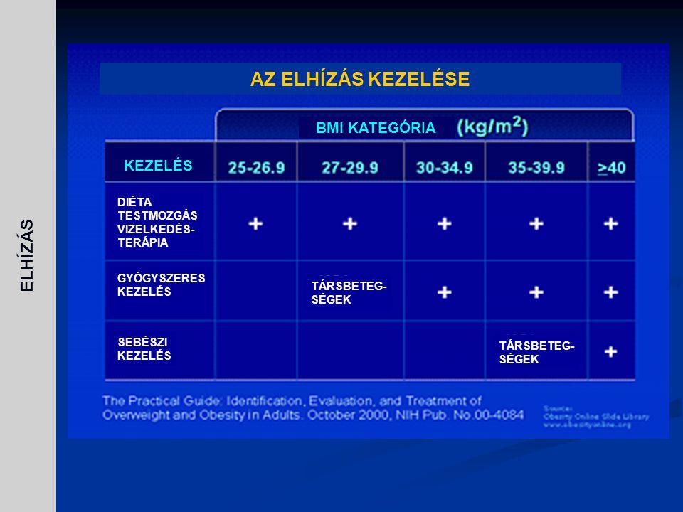 AZ ELHÍZÁS KEZELÉSE ELHÍZÁS BMI KATEGÓRIA KEZELÉS DIÉTA TESTMOZGÁS