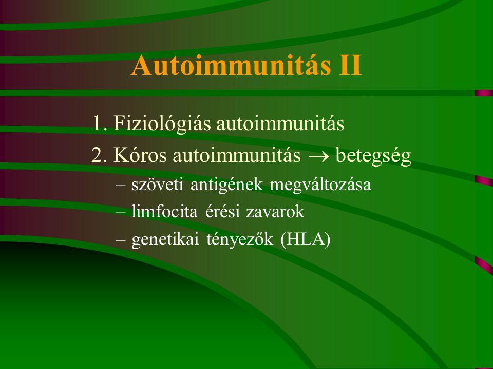 Autoimmunitás II 1. Fiziológiás autoimmunitás