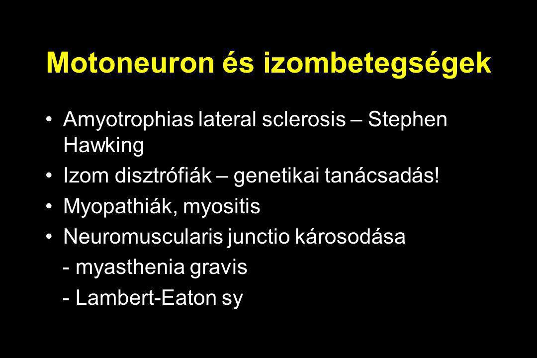 Motoneuron és izombetegségek