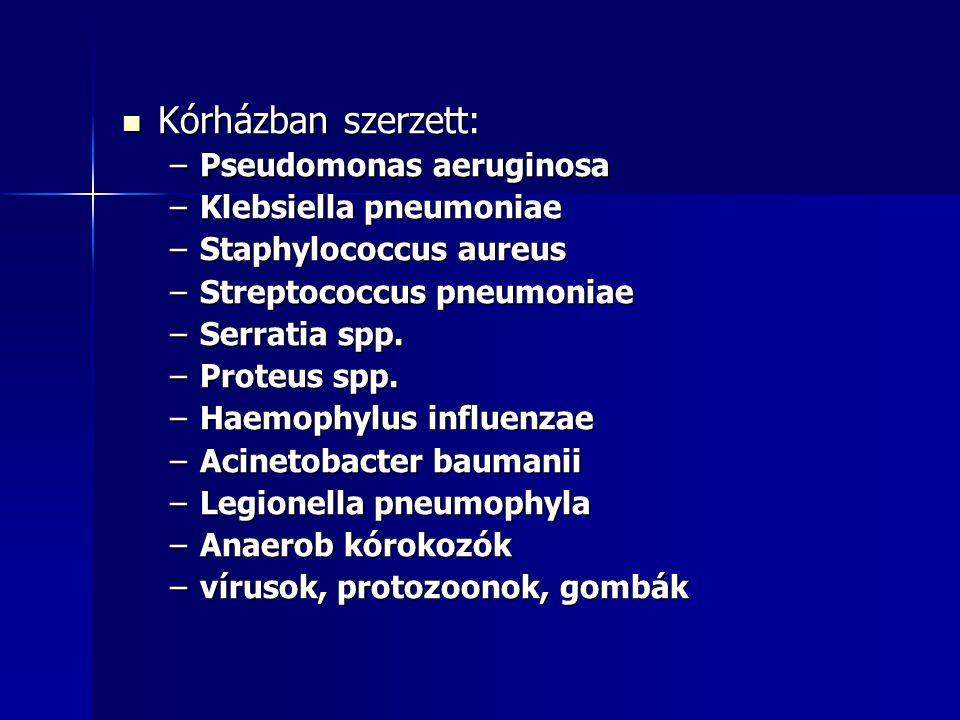 Kórházban szerzett: Pseudomonas aeruginosa Klebsiella pneumoniae