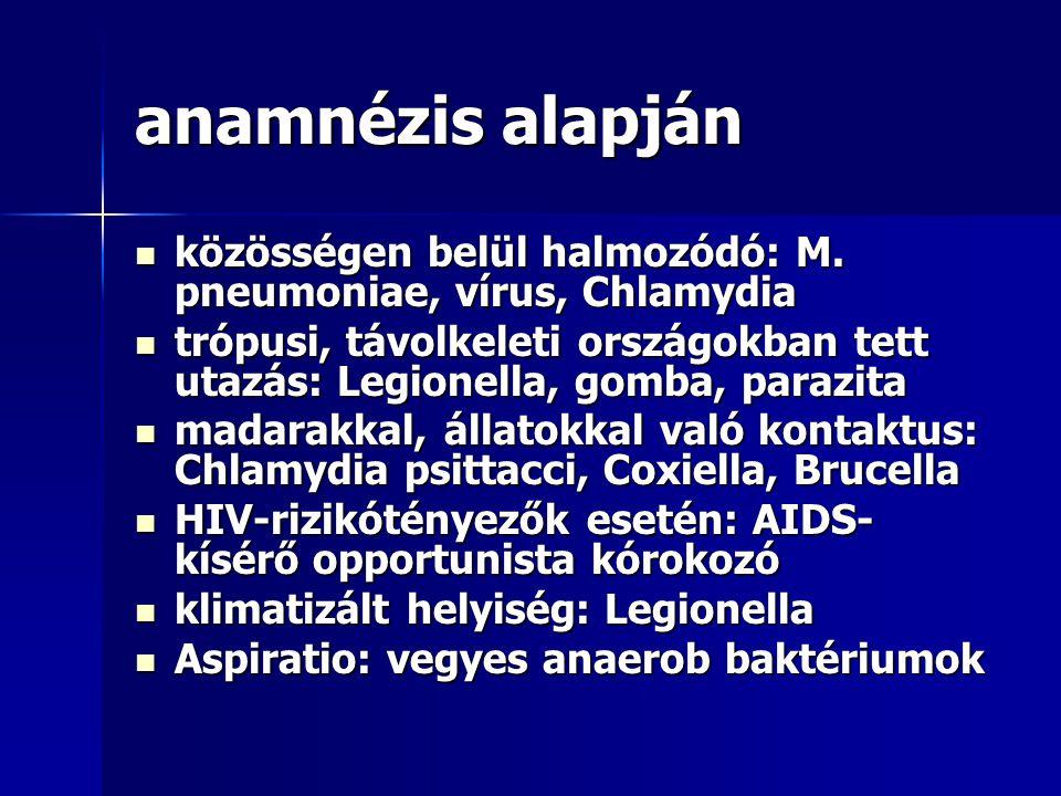 anamnézis alapján közösségen belül halmozódó: M. pneumoniae, vírus, Chlamydia.
