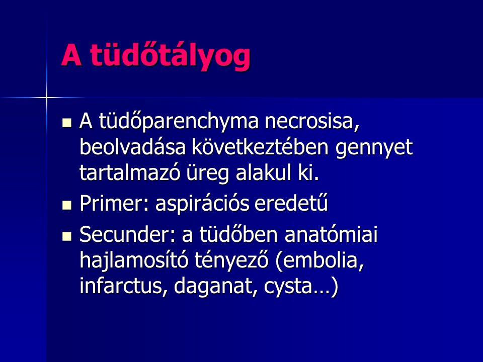 A tüdőtályog A tüdőparenchyma necrosisa, beolvadása következtében gennyet tartalmazó üreg alakul ki.