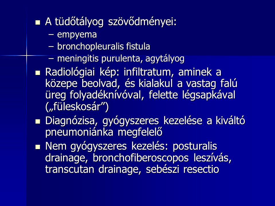 A tüdőtályog szövődményei: