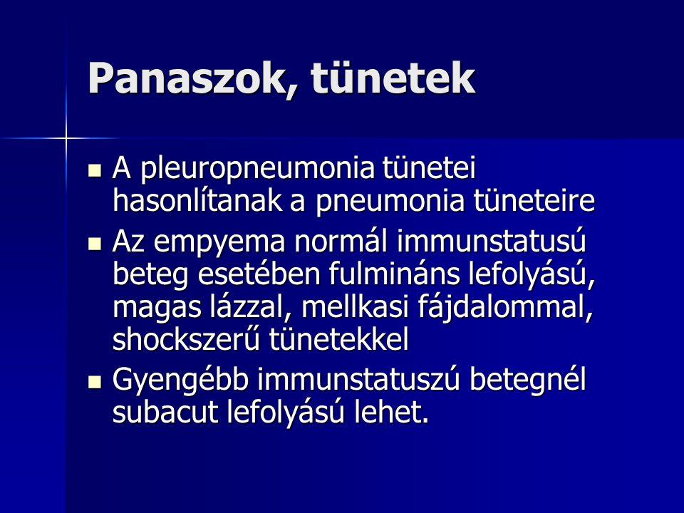 Panaszok, tünetek A pleuropneumonia tünetei hasonlítanak a pneumonia tüneteire.