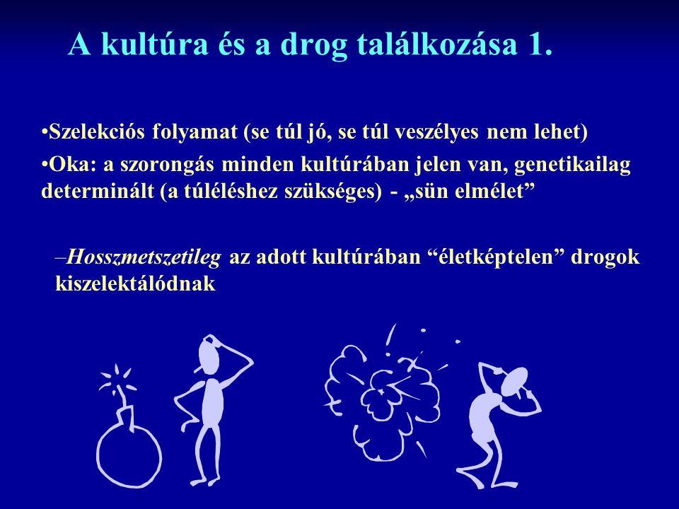 A kultúra és a drog találkozása 1.