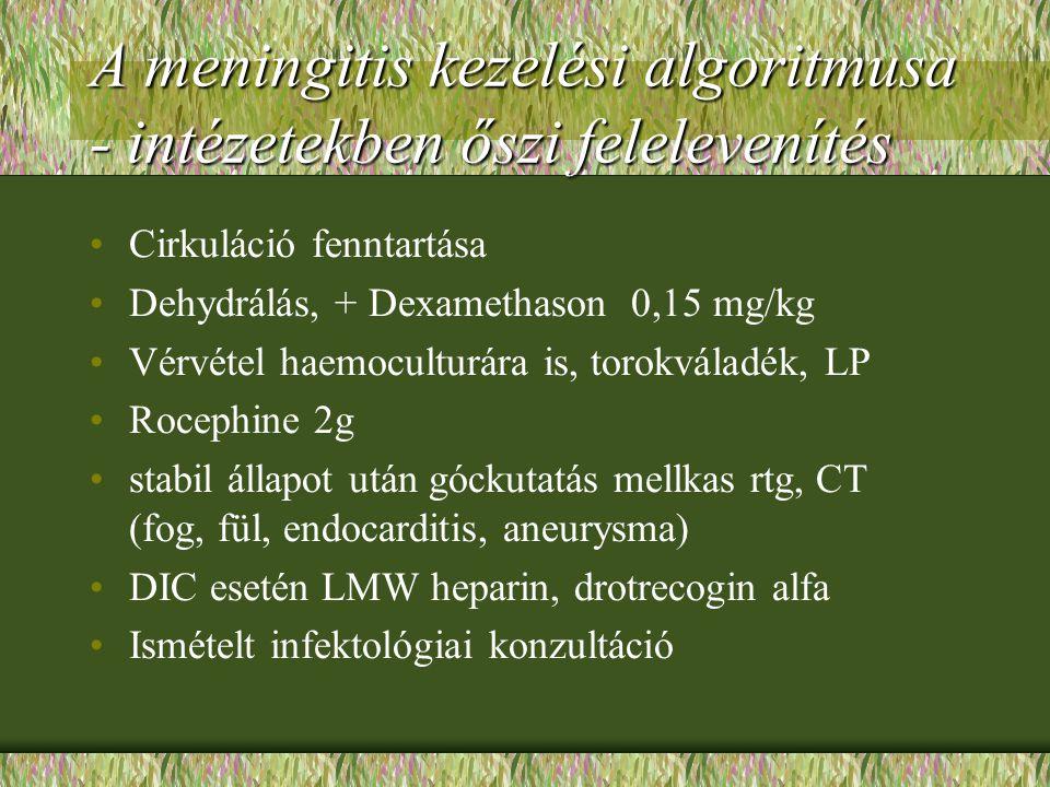 A meningitis kezelési algoritmusa - intézetekben őszi felelevenítés