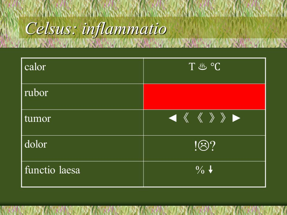 Celsus: inflammatio ! calor T ♨ ℃ rubor tumor ◄《 《 》》► dolor
