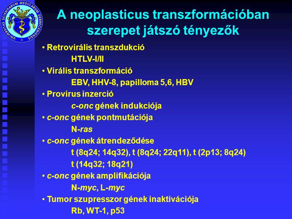 A neoplasticus transzformációban szerepet játszó tényezők