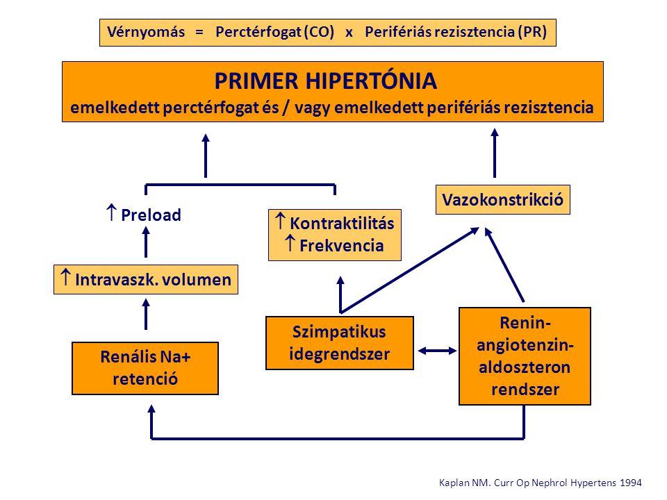 Vérnyomás = Perctérfogat (CO) x Perifériás rezisztencia (PR)
