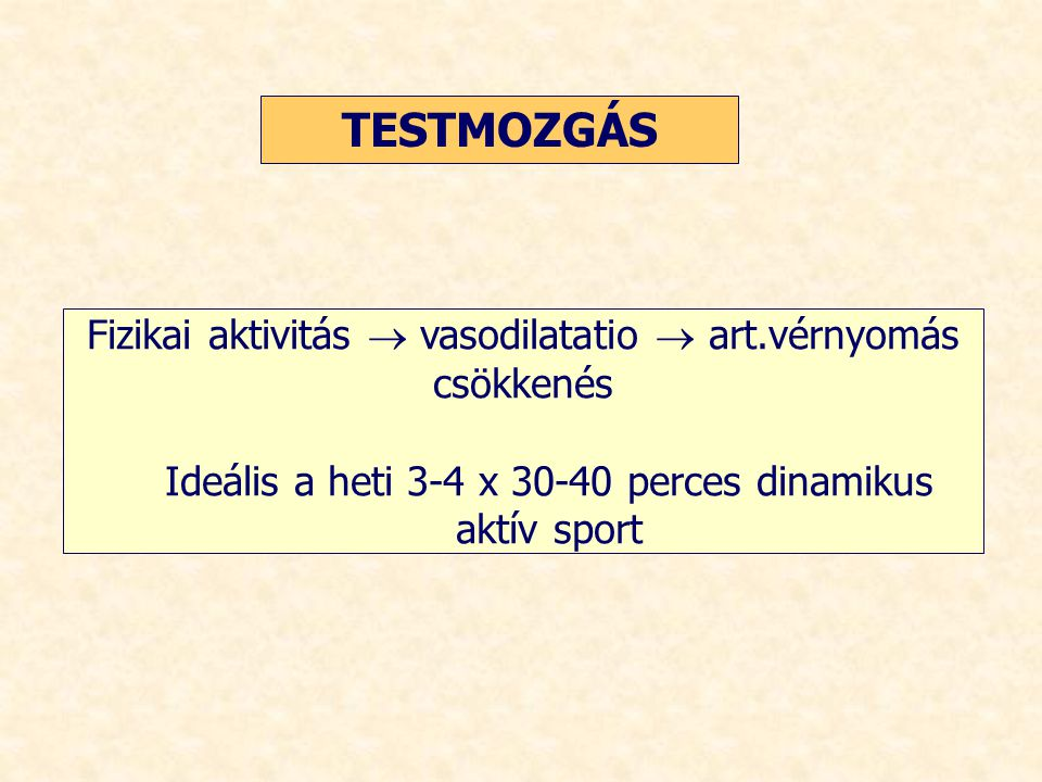 TESTMOZGÁS Fizikai aktivitás  vasodilatatio  art.vérnyomás csökkenés