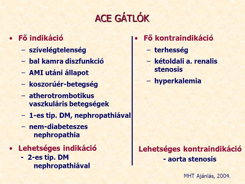 ACE GÁTLÓK Fő indikáció Fő kontraindikáció
