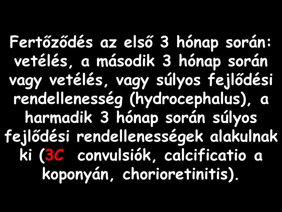 Fertőződés az első 3 hónap során: vetélés, a második 3 hónap során vagy vetélés, vagy súlyos fejlődési rendellenesség (hydrocephalus), a harmadik 3 hónap során súlyos fejlődési rendellenességek alakulnak ki (3C: convulsiók, calcificatio a koponyán, chorioretinitis).