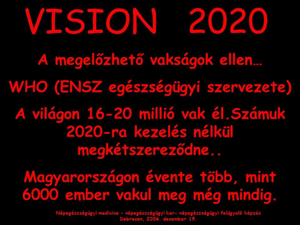 VISION 2020 A megelőzhető vakságok ellen…