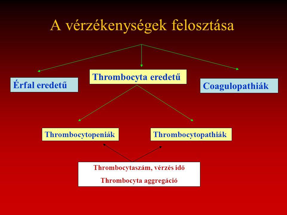 A vérzékenységek felosztása