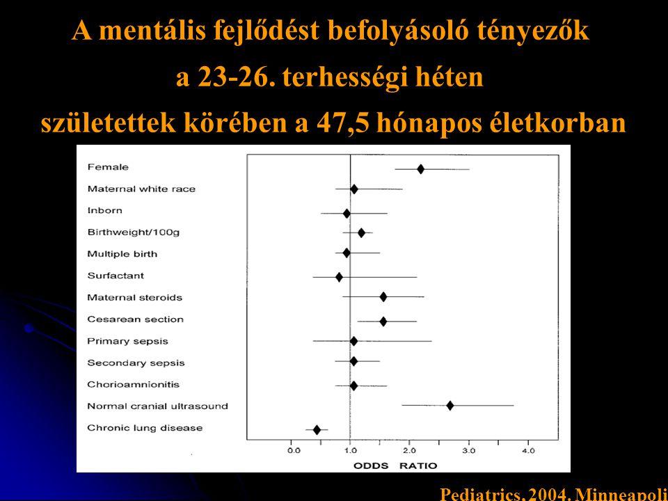 A mentális fejlődést befolyásoló tényezők a 23-26. terhességi héten