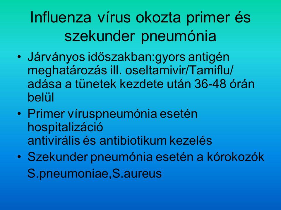 Influenza vírus okozta primer és szekunder pneumónia