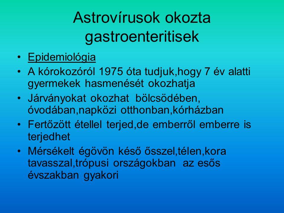 Astrovírusok okozta gastroenteritisek