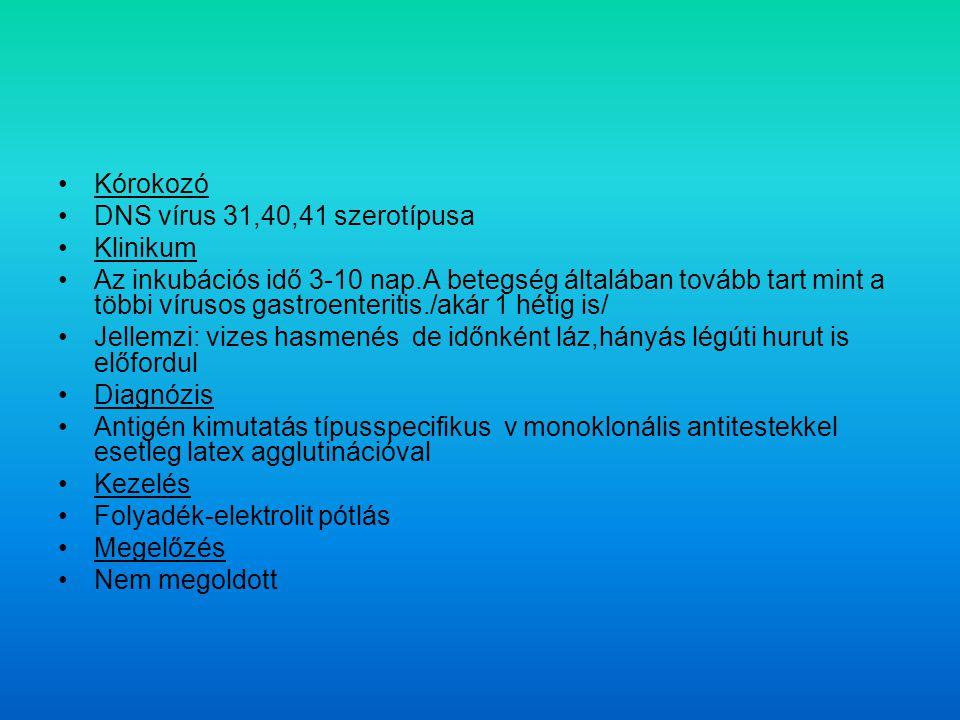 Kórokozó DNS vírus 31,40,41 szerotípusa. Klinikum.