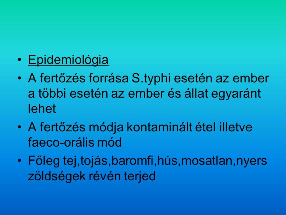 Epidemiológia A fertőzés forrása S.typhi esetén az ember a többi esetén az ember és állat egyaránt lehet.
