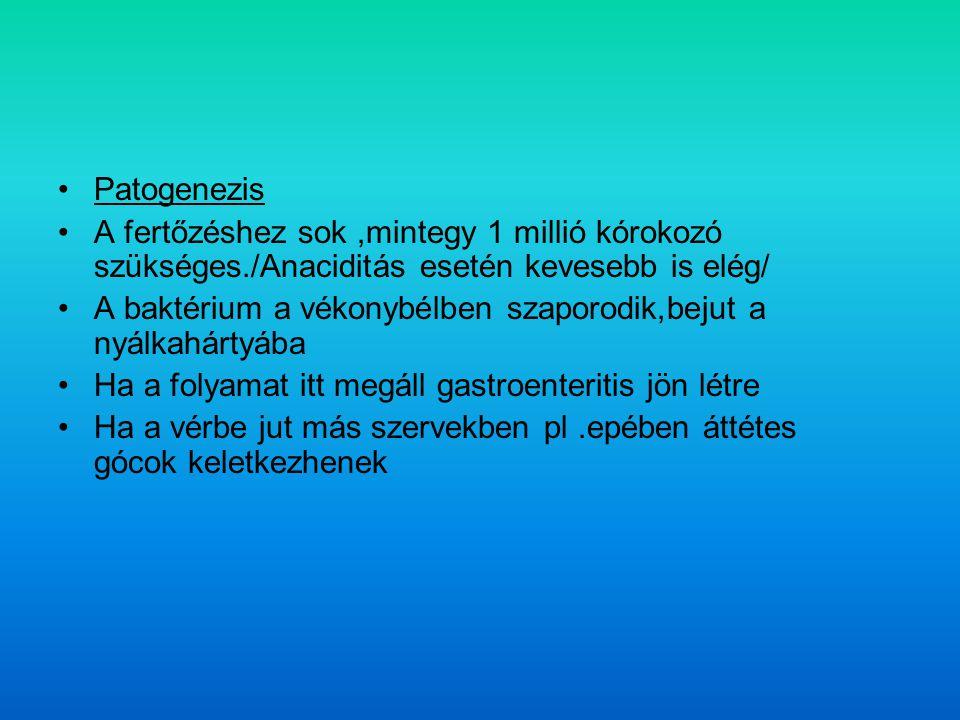 Patogenezis A fertőzéshez sok ,mintegy 1 millió kórokozó szükséges./Anaciditás esetén kevesebb is elég/