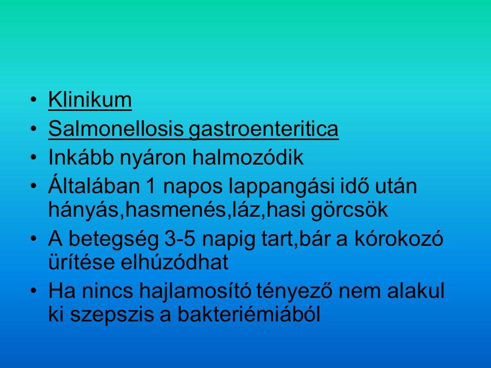 Klinikum Salmonellosis gastroenteritica. Inkább nyáron halmozódik. Általában 1 napos lappangási idő után hányás,hasmenés,láz,hasi görcsök.
