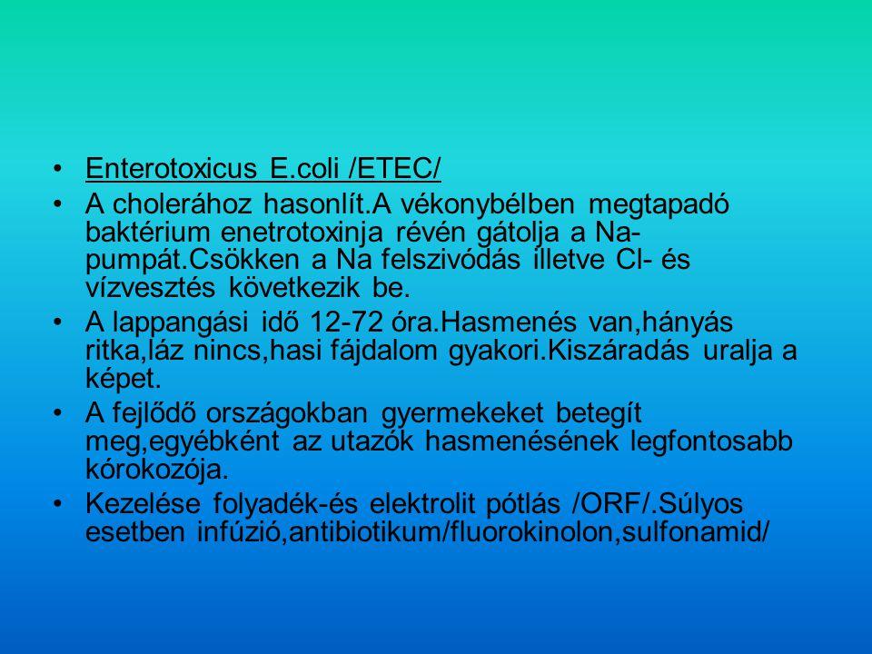 Enterotoxicus E.coli /ETEC/
