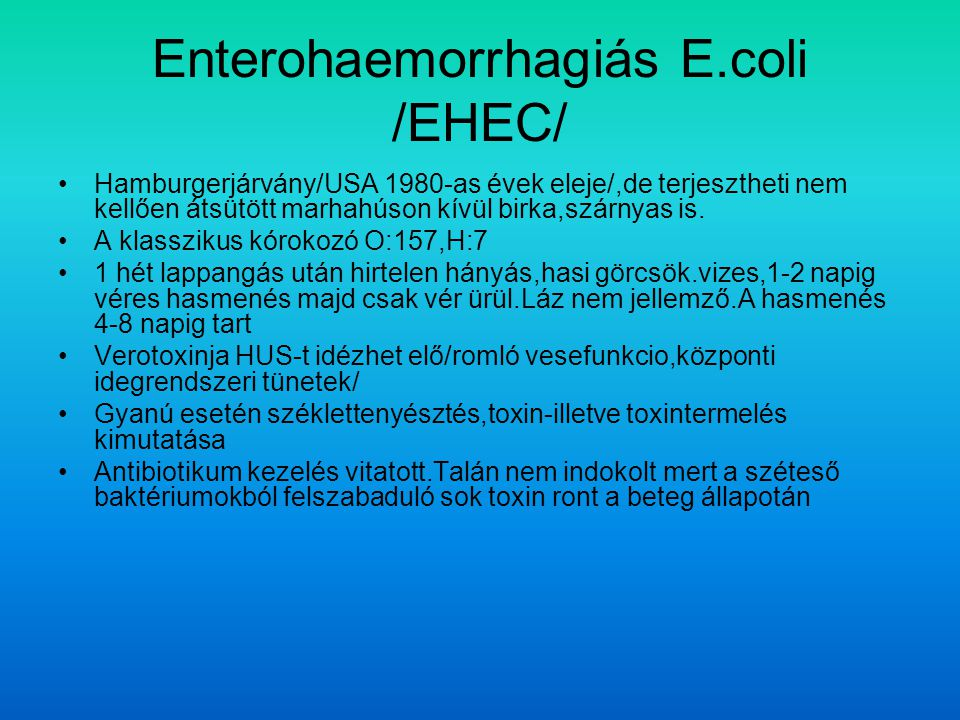 Enterohaemorrhagiás E.coli /EHEC/