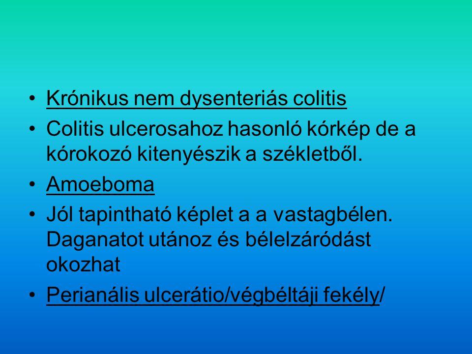Krónikus nem dysenteriás colitis