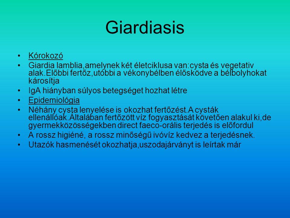 Giardiasis Kórokozó.