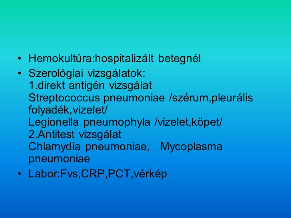 Hemokultúra:hospitalizált betegnél